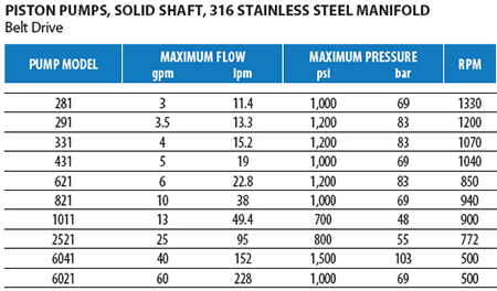 Stainless Steel Piston Pumps